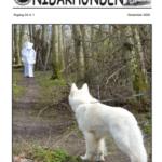Nidarhunden nr 1 2020