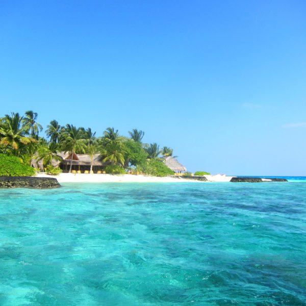 Maldivene backpacker individuelle reiser