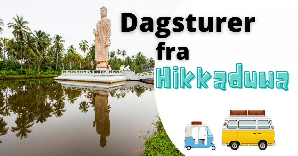 Dagsturer fra Hikkaduwa