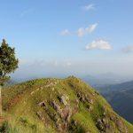 Ella Little Adams Peak