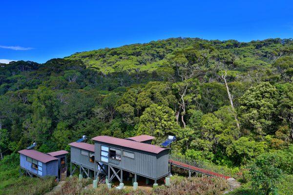 The Rainforest Ecolodge  *  Sinharaja