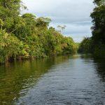 Tropisk elv rafting Kitulgala