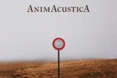 """Il Bacio della Medusa: l'album live """"AnimAcusticA"""" – COMPRA"""