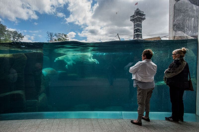 Copenhagen-Zoo-Denmark-2016-©-J-McArthur-BFF-22_preview