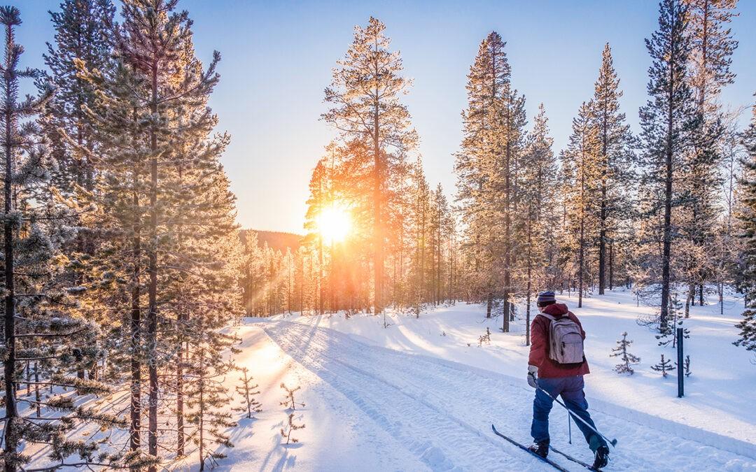 Løypenett i fjellet og skisporet med Lenningen Løypelag