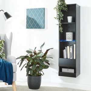 Galicia Black Wall Mounted Tall Shelving Unit
