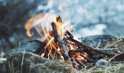 Göra upp eld i naturen & skogen – Allt du behöver veta