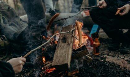 Matsäck i skogen – Tips för dagsturer & utflykter