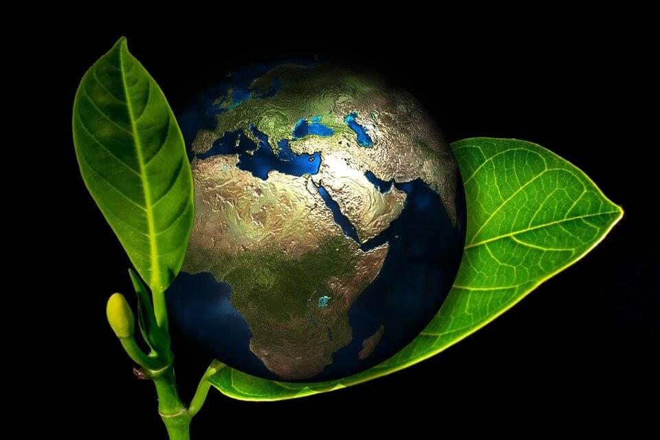 Jorden på ett blad som symboliserar grön energi