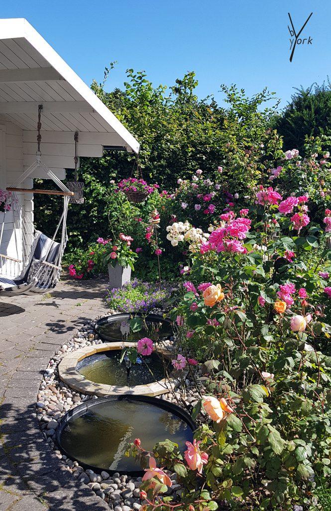 roser i garden of york