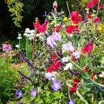 blomterkrukke garden of york