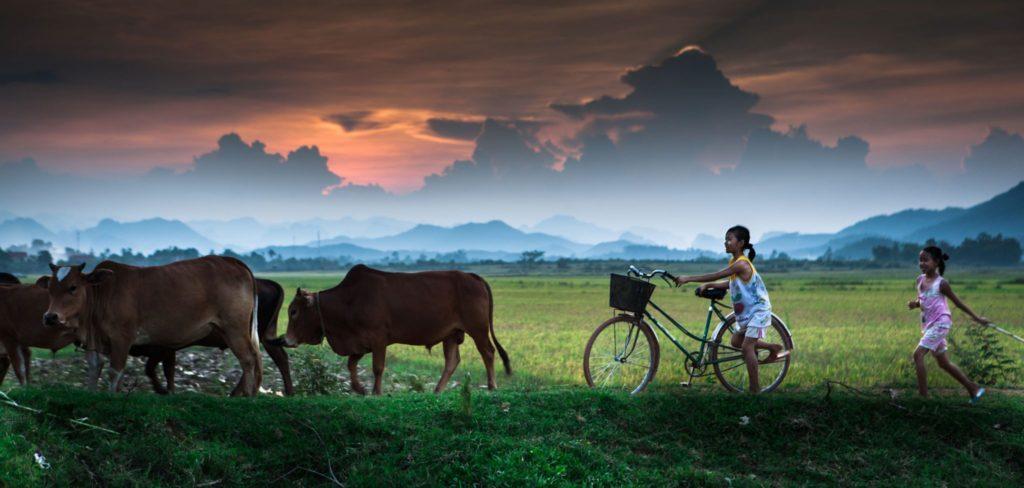 phong nha farmstay, Phong Nha Ke Bang, phong nha, Phong Nha Village, Phong Nha rural