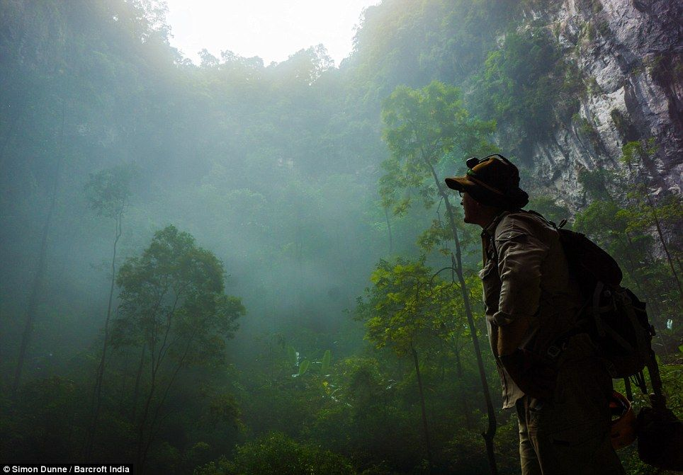 son doong cave tour, cave in vietnam with its own ecosystem, phong nha ke bang national park, son doong cave vietnam, hang son doong cave, hang sơn đoòng, Phong Nha Farmstay, Bong Lai Valley, how to get to phong nha