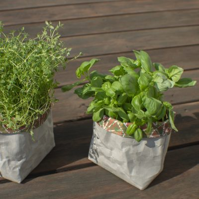 Flower pots from Washable paper