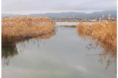 Photo-15-03-2021-09-38-53