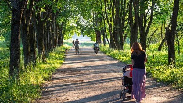 Qué necesita un bebé para Viaje y paseo
