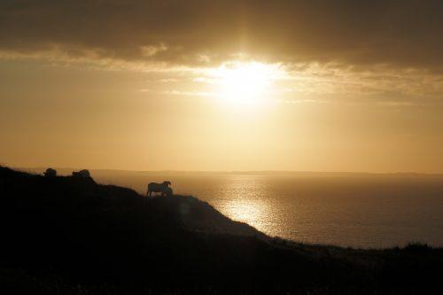 zonsondergang in Ardnamurchan. Op komt de zon, onder gaat de zon,  en meteen haast ze zich om daar weer op te komen.