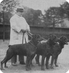 Die Siegergruppe v Kohlerward, Dortmund 1932