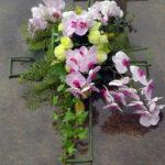 Kruisvorm-Orchidee1