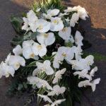 Rouwstuk-Nr13-witte-phalaenopsis2