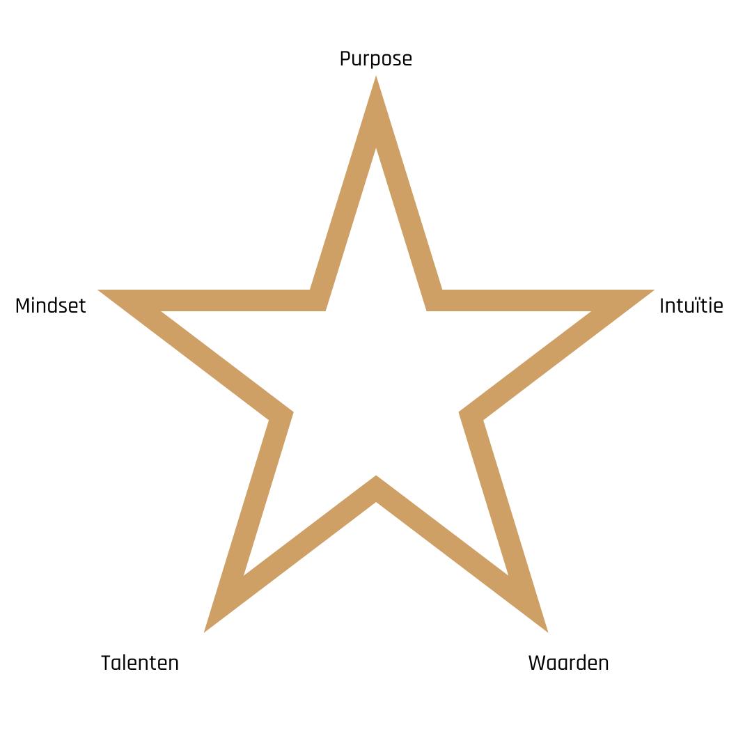 Het model voor Persoonlijk Leiderschap