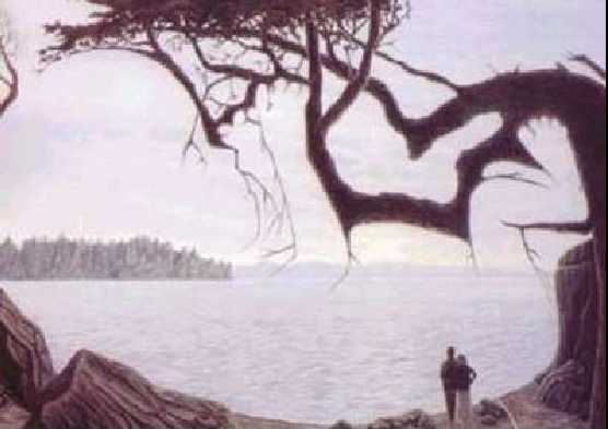 Dallocas image to demonstrate optical illusions