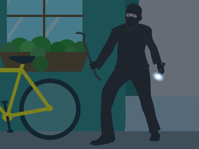 Inbrottstjuvar i området