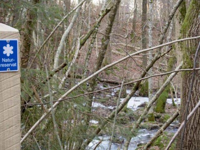 Naturreservatet utvidgas