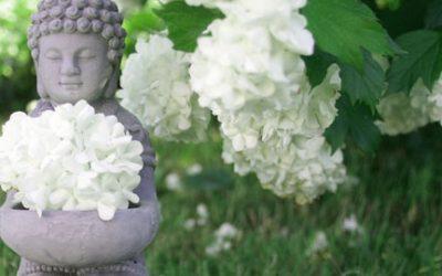 Yoga-Sutra – wichtige Begriffe in Kürze