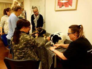 Dog reflexology education