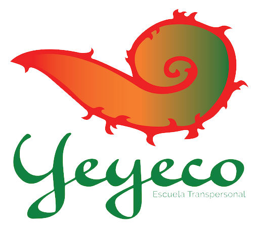 escuela-yeyeco