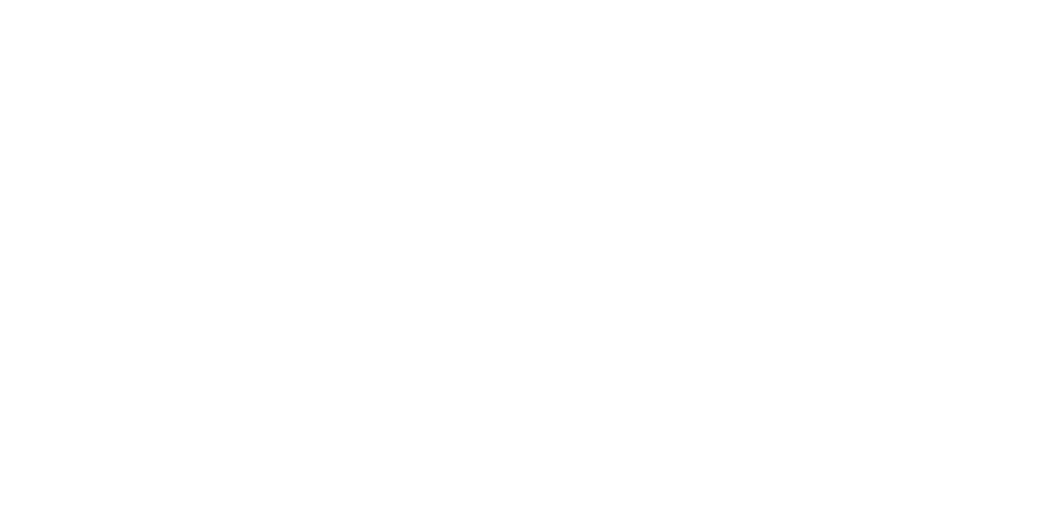 CIUCIU-Logo-light