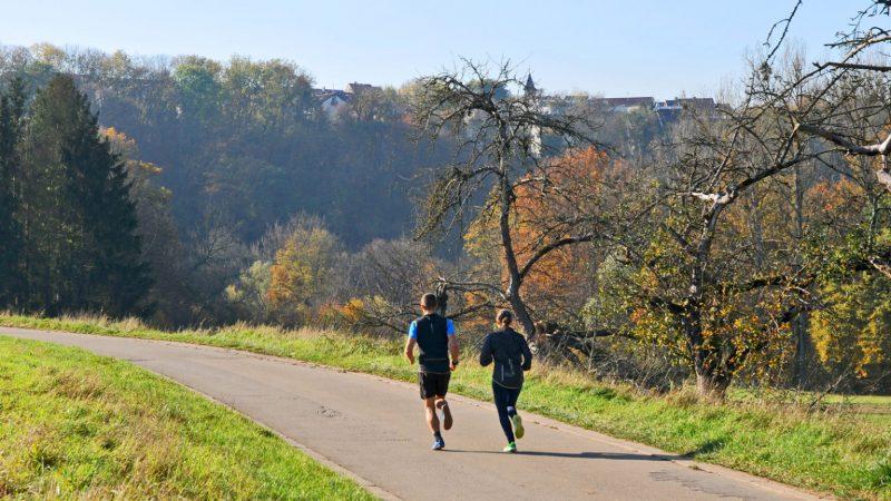 Lauf- und Triathlon-Trainingspläne