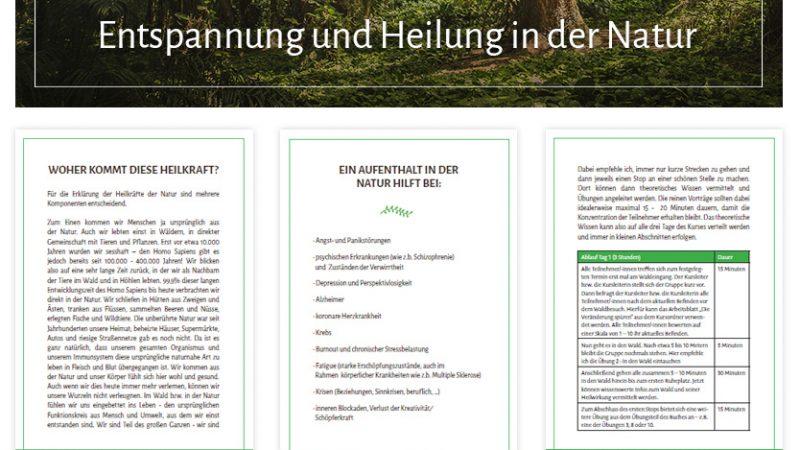 """Online-Ausbildung """"Waldbaden und Naturtherapie"""""""