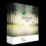 Heilpflanzenmagie (Lerne dich selbst zu versorgen)