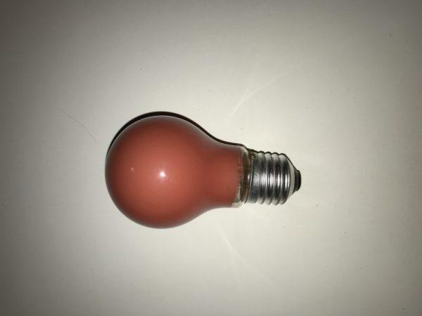 Röd dimbar glödlampa