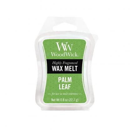 Palm Leaf - Melt