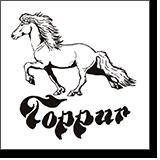 Toppur