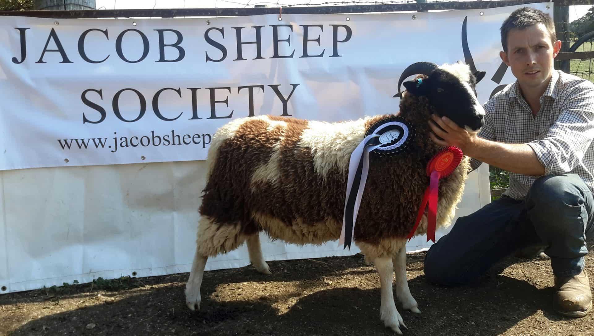 Charlie Coe Champion Fleece 2020