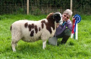 The Bramley's Reserve Champion Fleece 2020