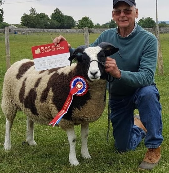 Jerry Strong & Lorna Hendy - Female Champion & Reserve Champion Shearling