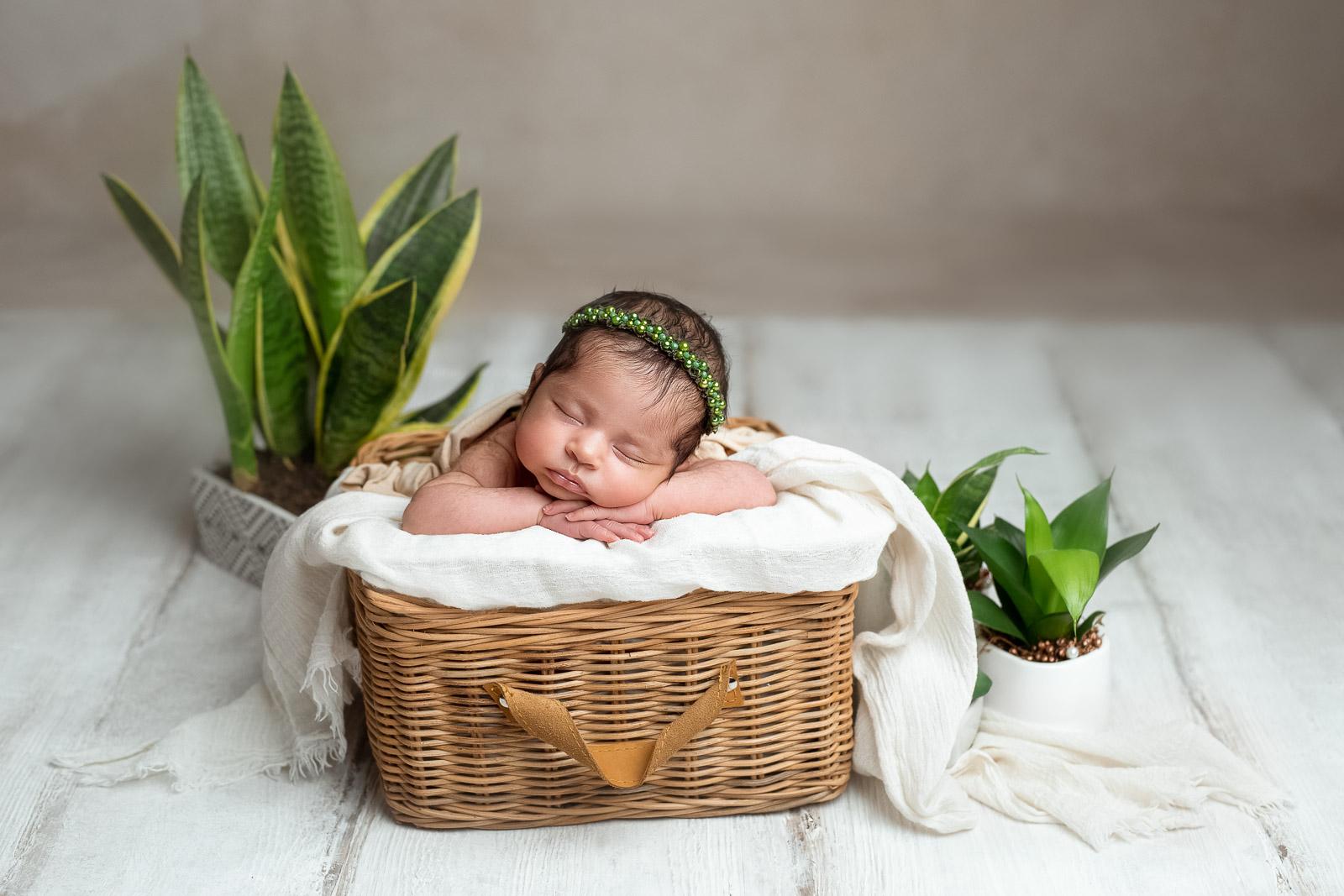 Babyfotograf 17
