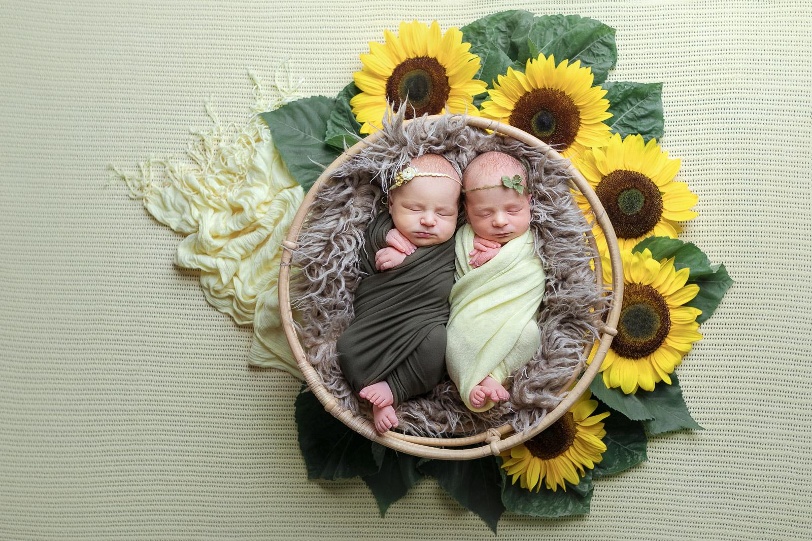 Zwillinge babyfotograf 5