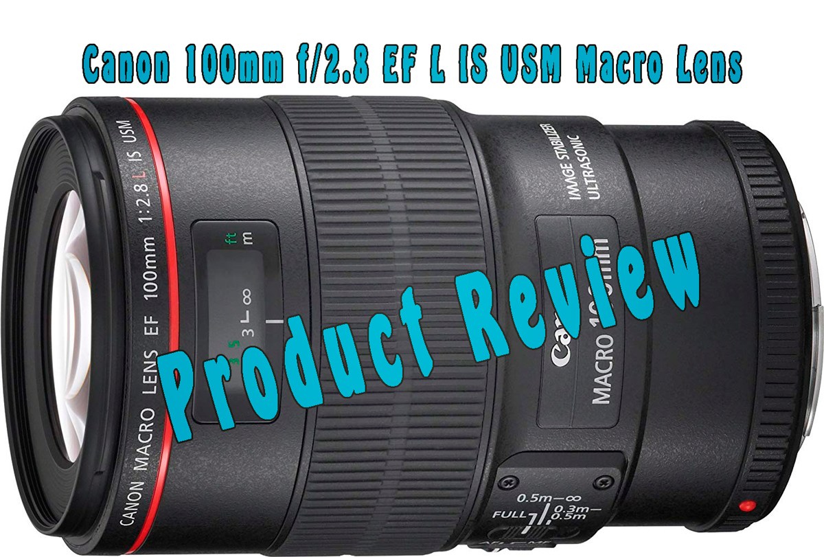 Canon EF 100mm 2,8 L IS USM Macro product review