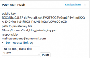 Die Schlüsselinformationen werden konfiguriert, der Text kann eingeben werden und push