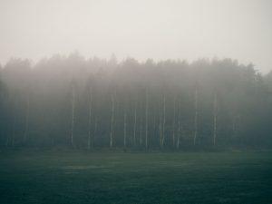 Bakgrundsbild dimma