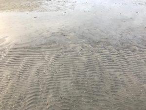Strand vid Solvik