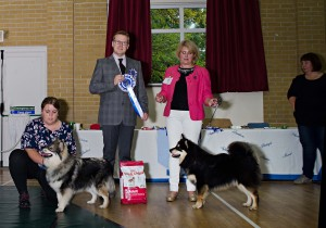 Best Puppy In Show and Reserve Best Puppy In Show