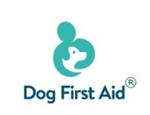 Dog First Aid Course – Sunday 21st July @ SITP