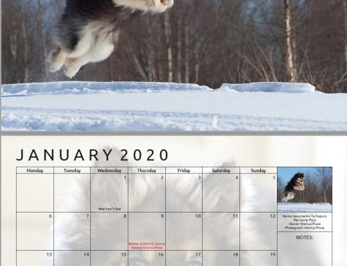 2021 Calendar Photo submissions now open